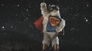 Grumpy Cat Makes Her Movie Debut, Gets a Stunt Double
