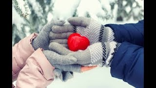 Алексей Брянцев Тебя мне подарила зима
