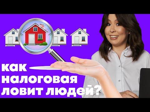 Как налоговая узнает, кто сдает квартиру и не платит налоги? Кто стучит в налоговую?