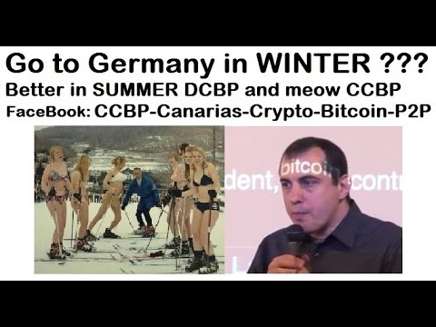 InnocentCryptoKitty 021 Andreas Antonopoulos Germany Ski Bitcoin Innovation Funny Epic DCBP CCBP P2P