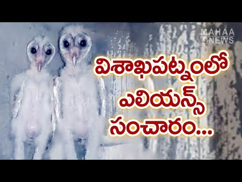 Aliens Found in a Construction Building at Visakhapatnam | Mahaa News