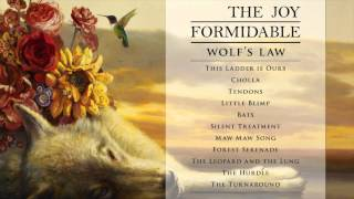 The Joy Formidable - The Turnaround [Official Audio from Wolf