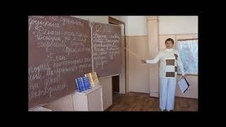Репортаж о проведении уроков финансовой грамотности в МБОУ Дубровской №2 СОШ