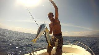 Spinning offshore alle lampughe - Pesca in mare dalla barca