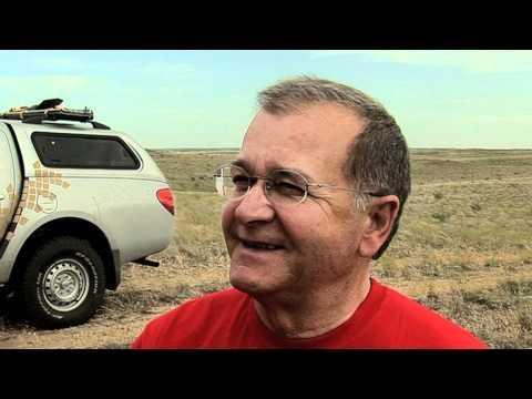 АВТОГРАД Маркет - официальный дилер Peugeot в Тюмени