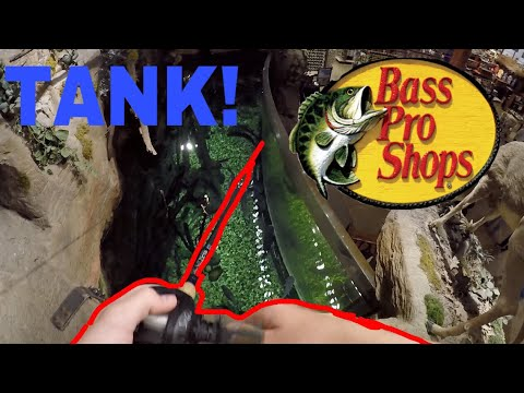 Fishing In Bass Pro Shops
