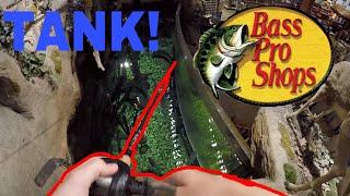 Fishing In Bass Pro Shops