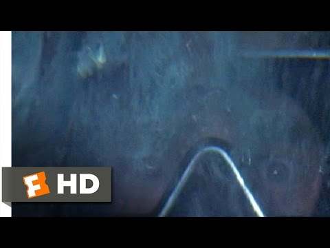 Hooper in the Cage - Jaws (8/10) Movie CLIP (1975) HD