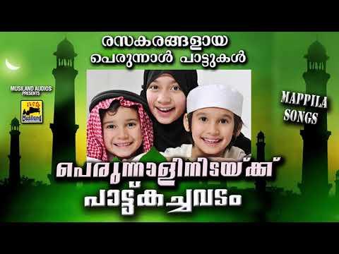 പെരുന്നാളിനിടയ്ക്ക് പാട്ടുകച്ചവടം  Malayalam Mappila Songs 2018 | Eid Songs 2018 | Perunnal Pattukal