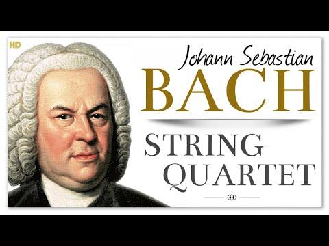 Bach String Quartet - The Art Of Fugue   Baroque Chamber Classical Music