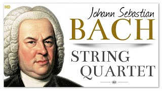 Bach String Quartet - The Art Of Fugue | Baroque Chamber Classical Music
