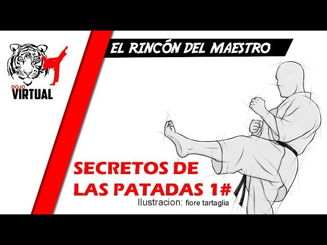 SECRETOS DE LAS PATADAS 1# | EL RINCON DEL MAESTRO