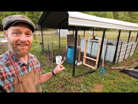 My 240 Square Foot PIG Farm