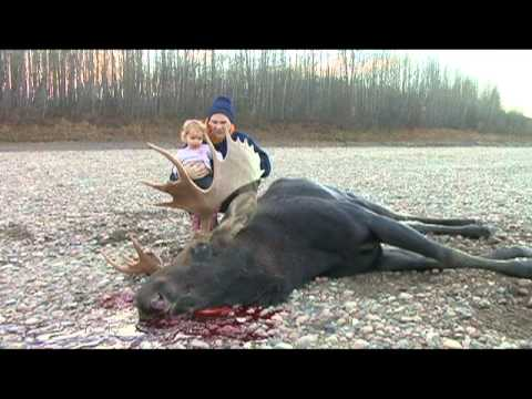 Long Range Hunting.  1100 Yard bull moose kill