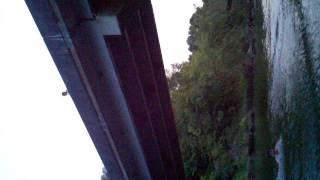 Gw jumpin off delight bridge