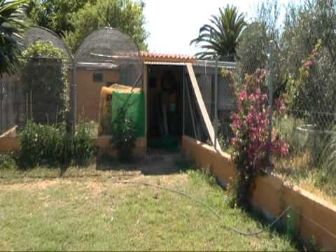 Exceptional Rustic Villa with Large Garden Part I Carmona, Sevilla