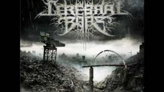 Cerebral Bore - 24 Year Party Dungeon (OFFICIAL w/ Lyrics)