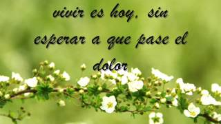 Vivir es hoy- Soledad Pastorutti feat Carlos Santana (Lyrics video)