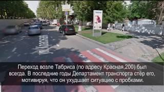 Краснодар: мы в Ботаническом саду / Что можно съесть в дендрарии в июне