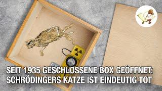 Seit 1935 geschlossene Box geöffnet: Schrödingers Katze ist eindeutig tot