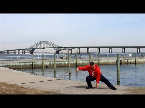 Yang Style Tai Chi Short Form - William C.C. Chen Sequence