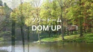 ツリードーム Dom'Up