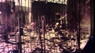 1992 Los Angeles riots - VTS_01 (08).mpg