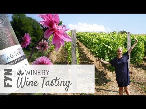 Fyn Guide: Privat Wine Tasting &  Park Golf on Danish Winery | Scandinavia