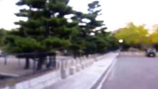 仁徳天皇百舌鳥耳原中陵(前方後円墳)に行った気になるように撮影しま...