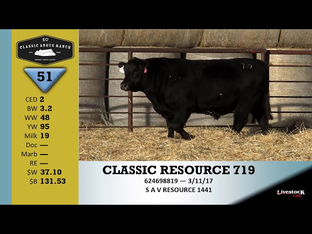 Classic Angus Ranch Lot 51