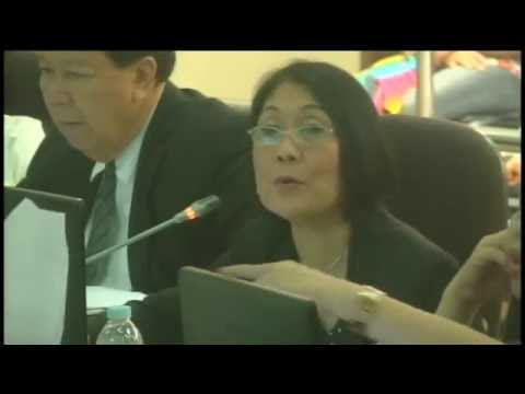 Cebu City Council Session Live Streaming - April 27, 2016