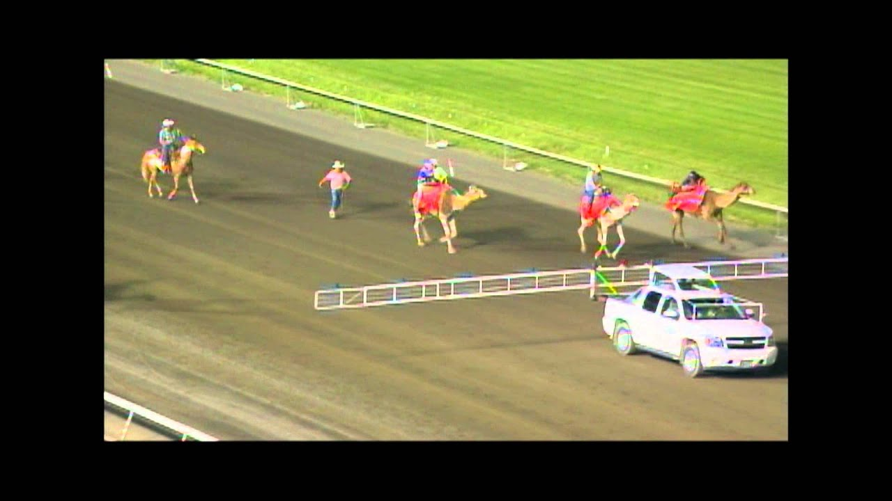 Meadowlands Racing & Entertainment - The world' s greatest harness