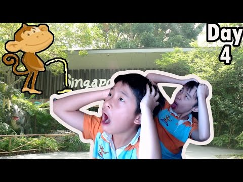 MONKEY PEEING AT THE ZOO?! | Trip to Singapore Day 4