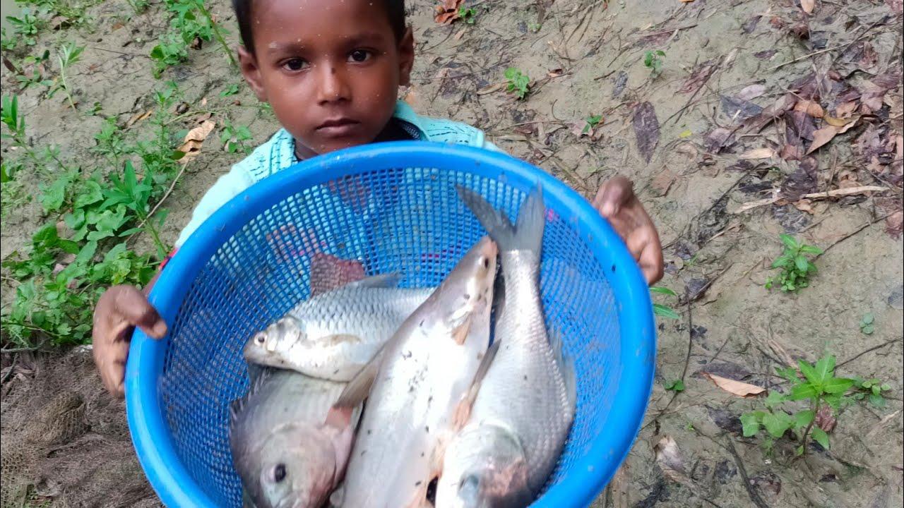 Net Fishing - Traditional Cast Net Fishing in Village - Fish Video