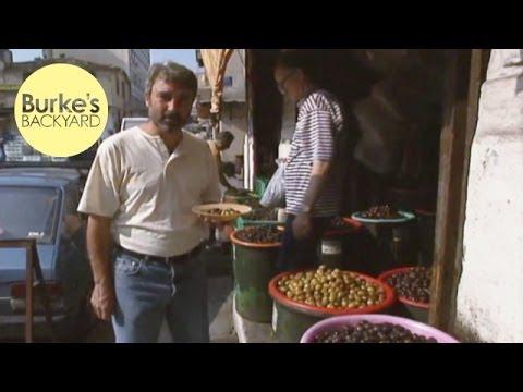 Burke's Backyard Olives in Greece