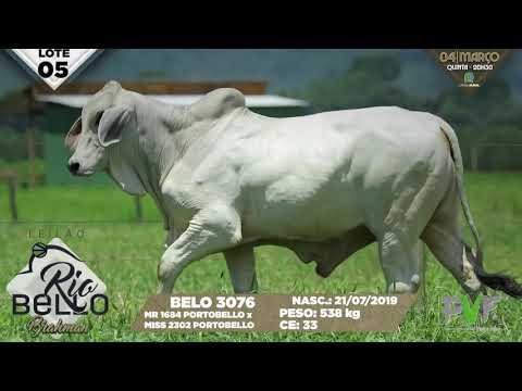 LOTE 05   BELO 3076