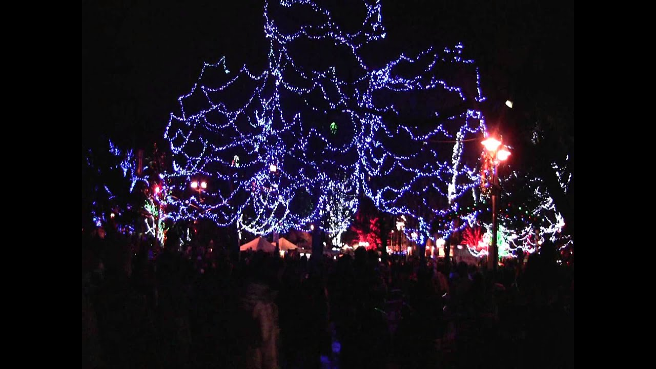 Lowe S Brampton Christmas Market And City Of Tree Lighting Event You