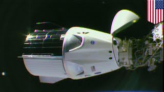 SpaceX Dragon capsule docks with International Space Station - TomoNews