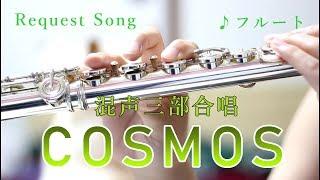 【フルート】COSMOS/作詞作曲:ミマス 【合唱曲演奏してみた】