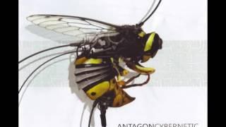 Antagon - Cockamamie