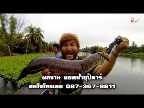 ตกปลาช่อนEPไอ้ช่อนยักษ์แม่น้ำท่าจีนโหดBY Yod911