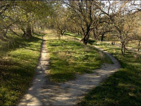 Dry Creek Trails - Single Track - Modesto Ca