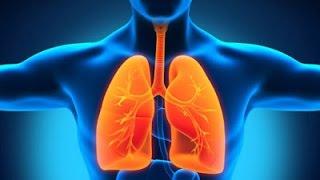 10 Makanan Pembersih Paru-paru Yang Luar Biasa