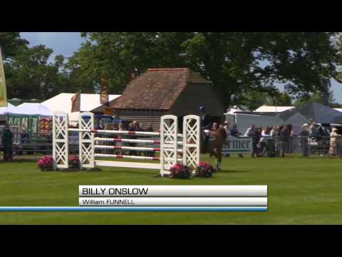 Showjumping - International Stairway Series South of England Show