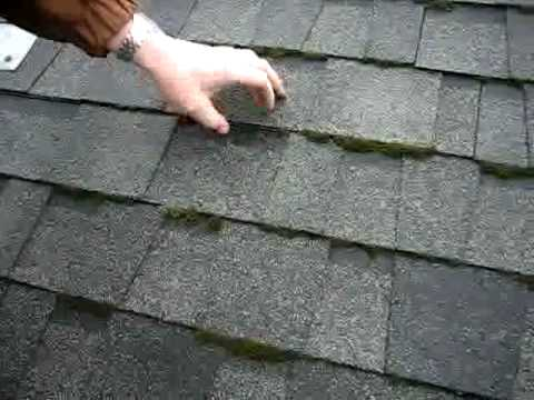 Roof Moss Growth Amp Zinc Strips 2 Roof Life Of Oregon