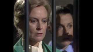 behind the bars the unofficial prisoner cell block h companion