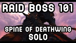 WoW RAID BOSS 101: Spine of Deathwing SOLO