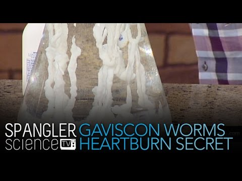 Gaviscon Worms The Heartburn Secret - Cool Science Experiment