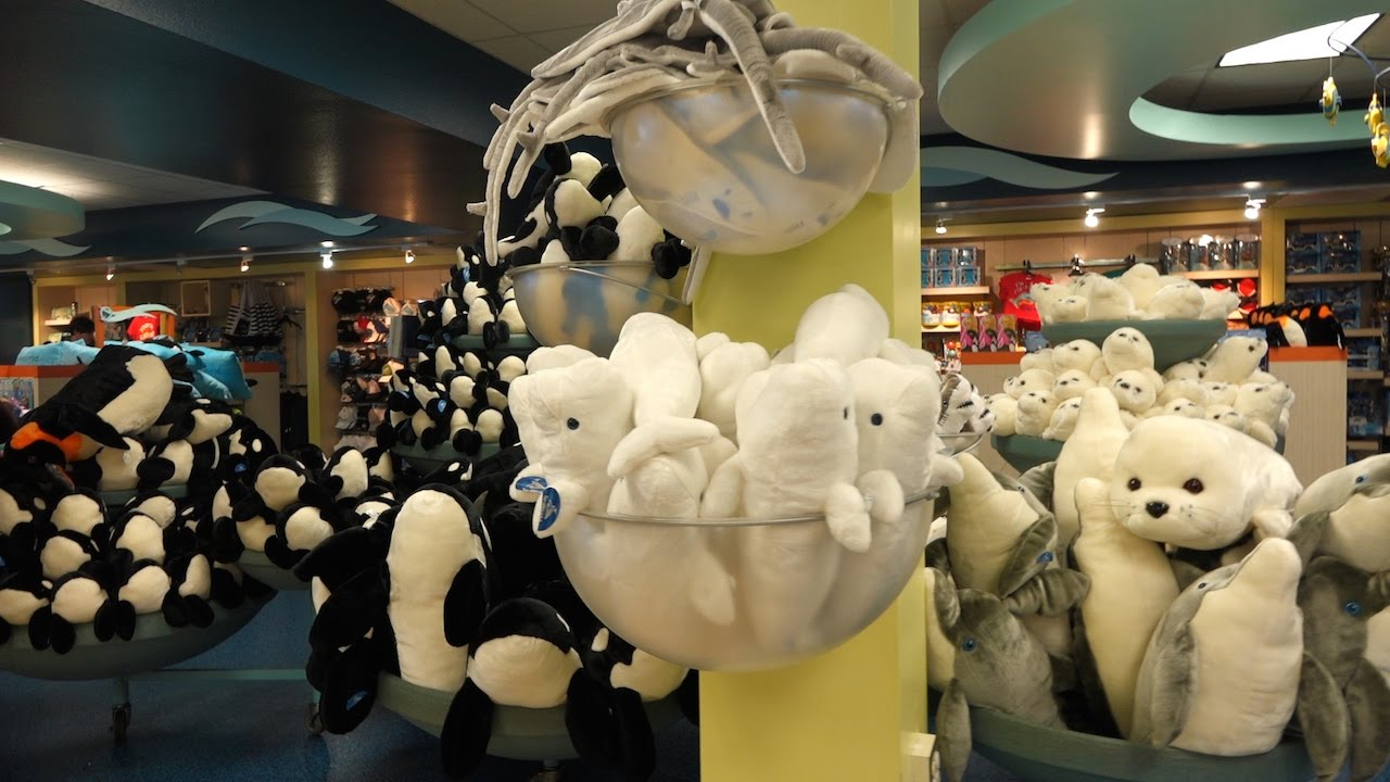 Main Mast Gift Shop, SeaWorld San Antonio - YouTube