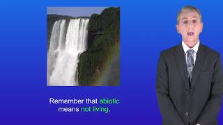 """GCSE Science Revision Biology """"The Water Cycle"""""""